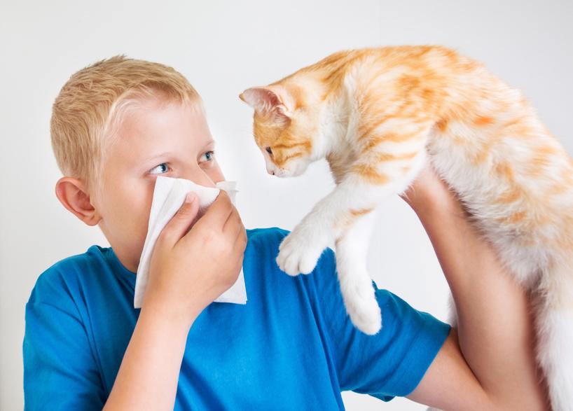 asthma-tierallergie.jpg